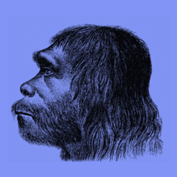 Early Neanderthal DNA gives information about modern human-related dispersal from Africa